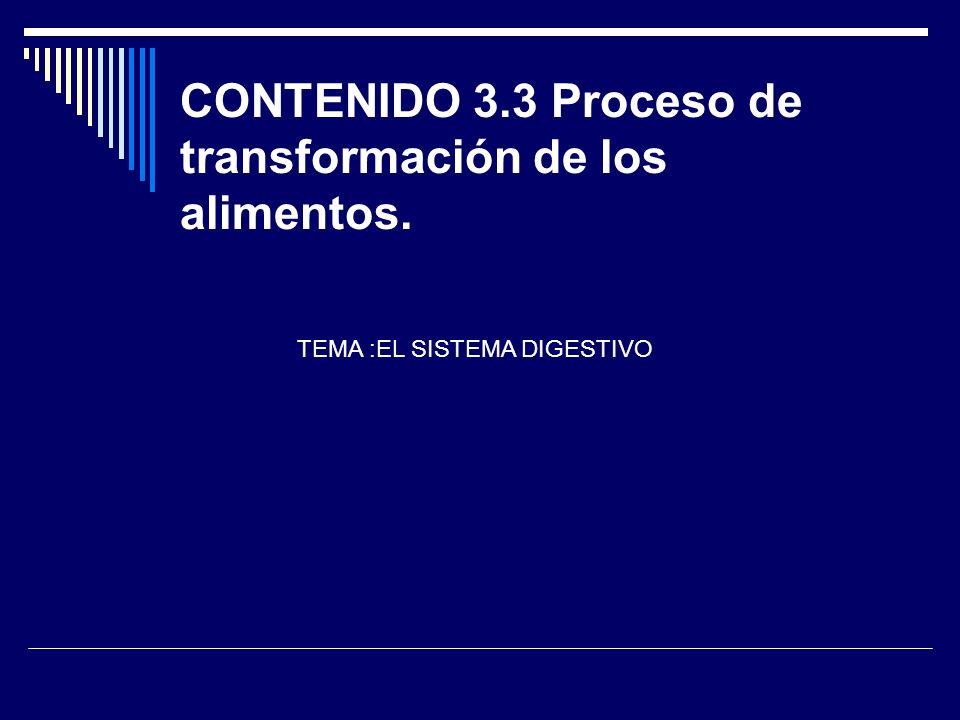 CONTENIDO 3.3 Proceso de transformación de los alimentos.