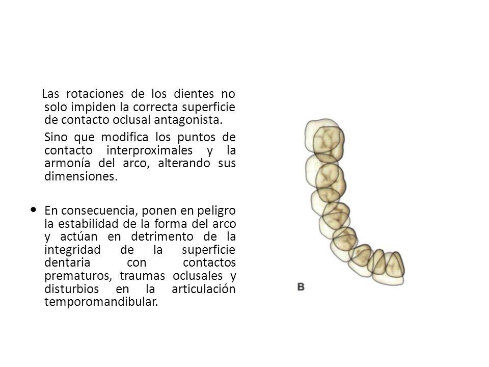 Las rotaciones de los dientes no solo impiden la correcta superficie de contacto oclusal antagonista.