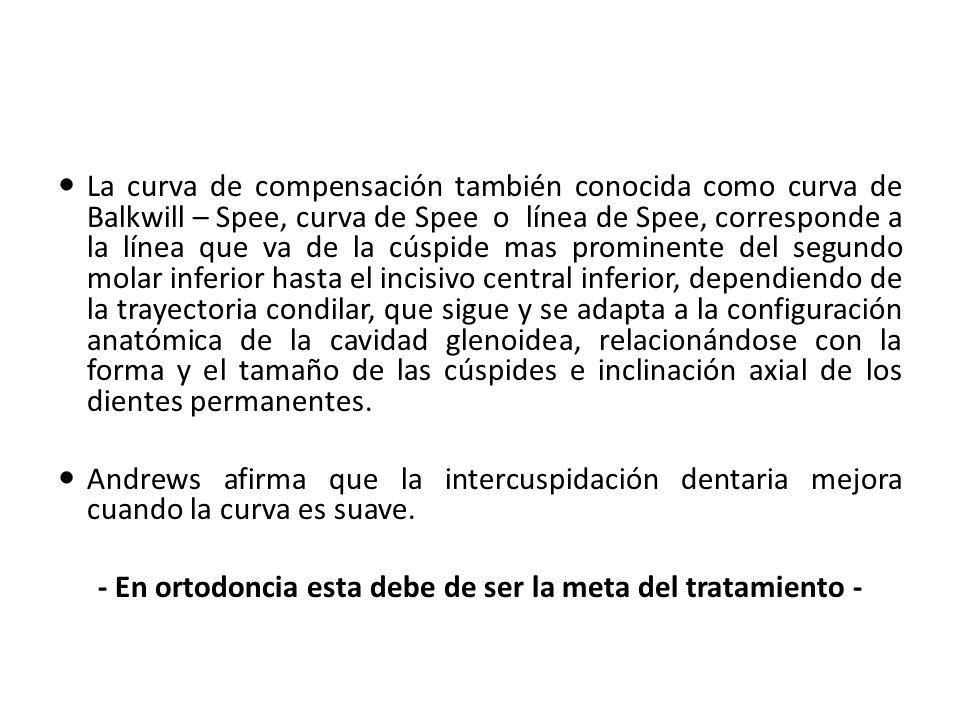 - En ortodoncia esta debe de ser la meta del tratamiento -