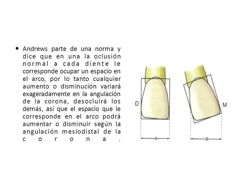 Andrews parte de una norma y dice que en una la oclusión normal a cada diente le corresponde ocupar un espacio en el arco, por lo tanto cualquier aumento o disminución variará exageradamente en la angulación de la corona, desocluirá los demás, así que el espacio que le corresponde en el arco podrá aumentar o disminuir según la angulación mesiodistal de la corona.
