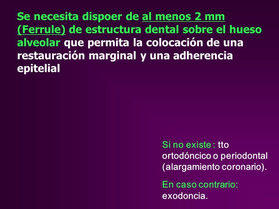 Se necesita dispoer de al menos 2 mm (Ferrule) de estructura dental sobre el hueso alveolar que permita la colocación de una restauración marginal y una adherencia epitelial