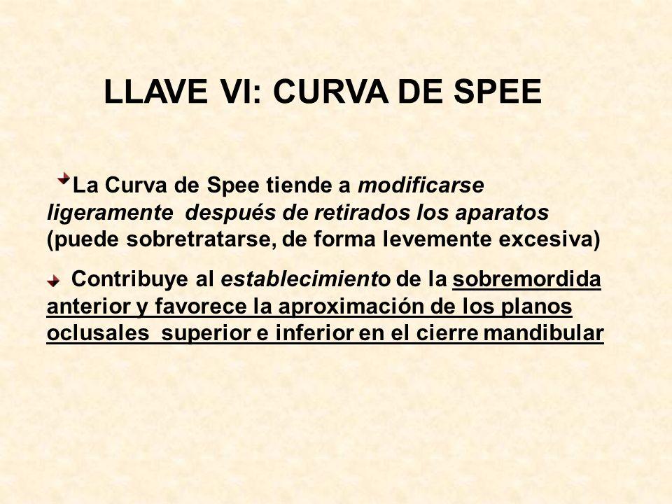 LLAVE VI: CURVA DE SPEE