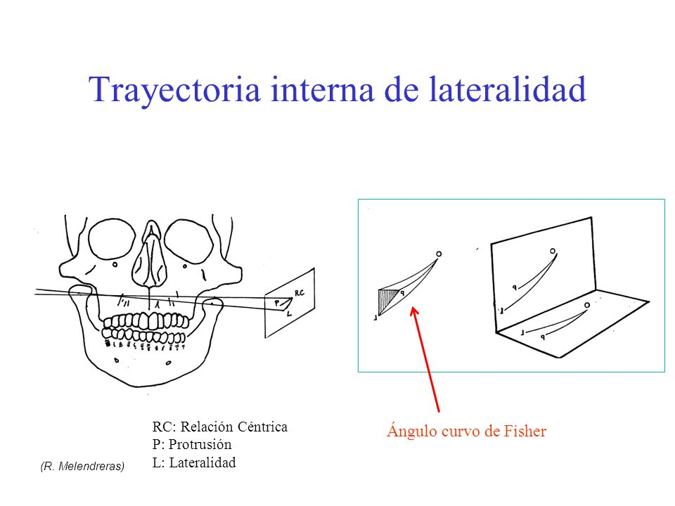 Trayectoria interna de lateralidad