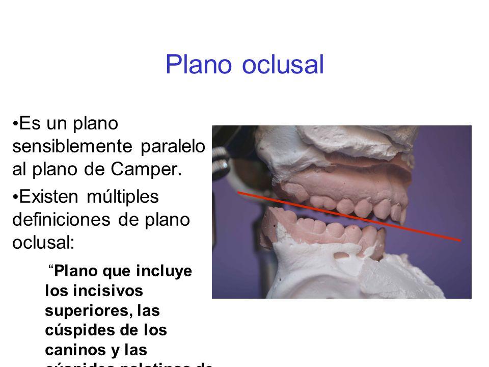 Plano oclusal Es un plano sensiblemente paralelo al plano de Camper.