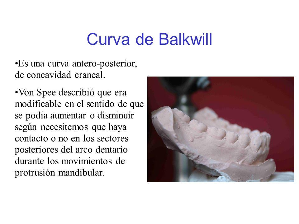 Curva de Balkwill Es una curva antero-posterior, de concavidad craneal.