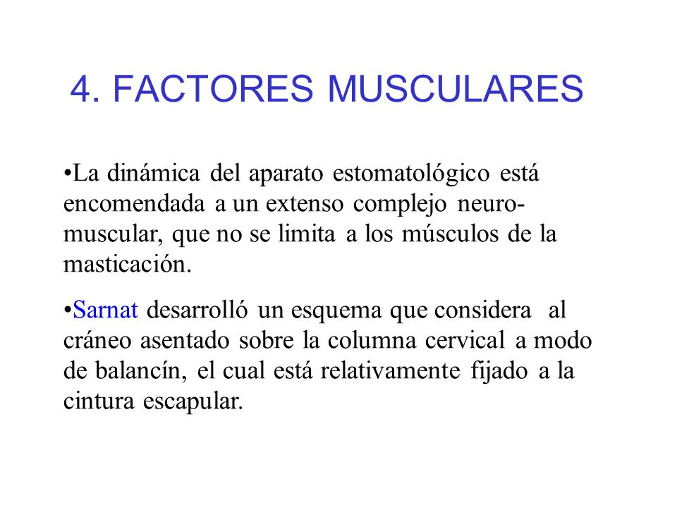 4. FACTORES MUSCULARES