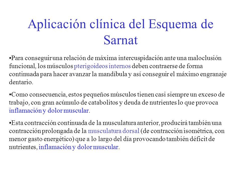 Aplicación clínica del Esquema de Sarnat