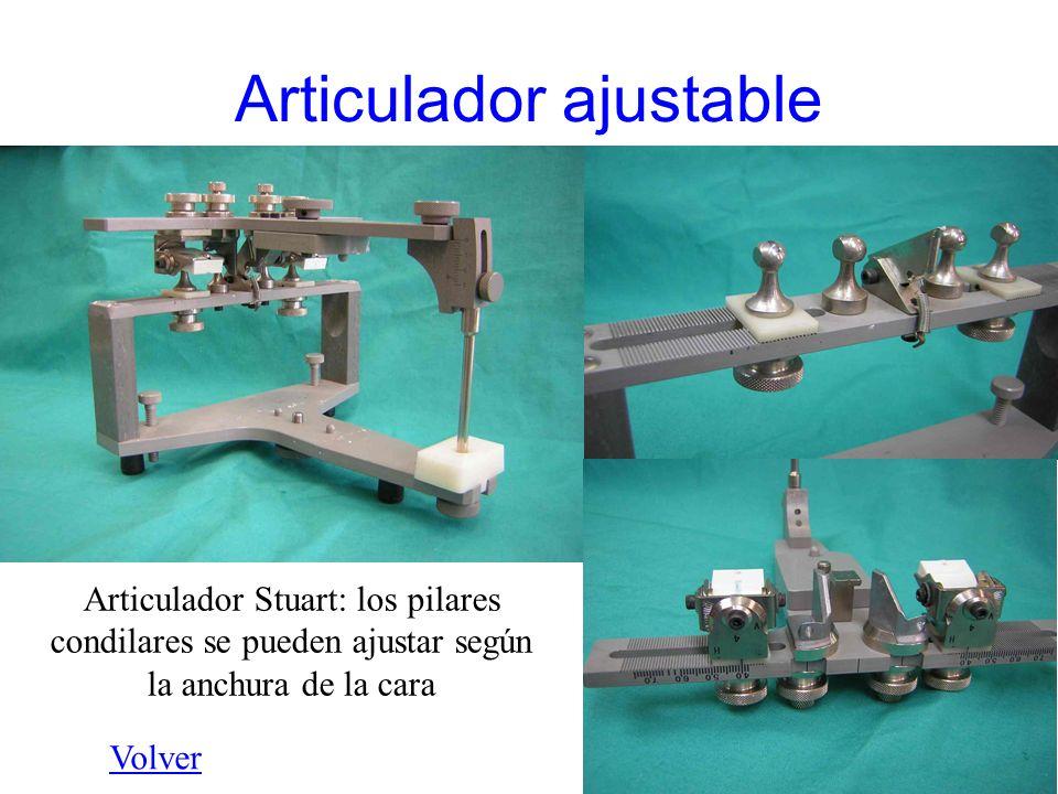 Articulador ajustable