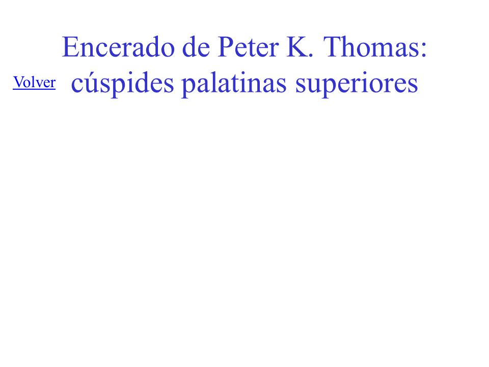 Encerado de Peter K. Thomas: cúspides palatinas superiores