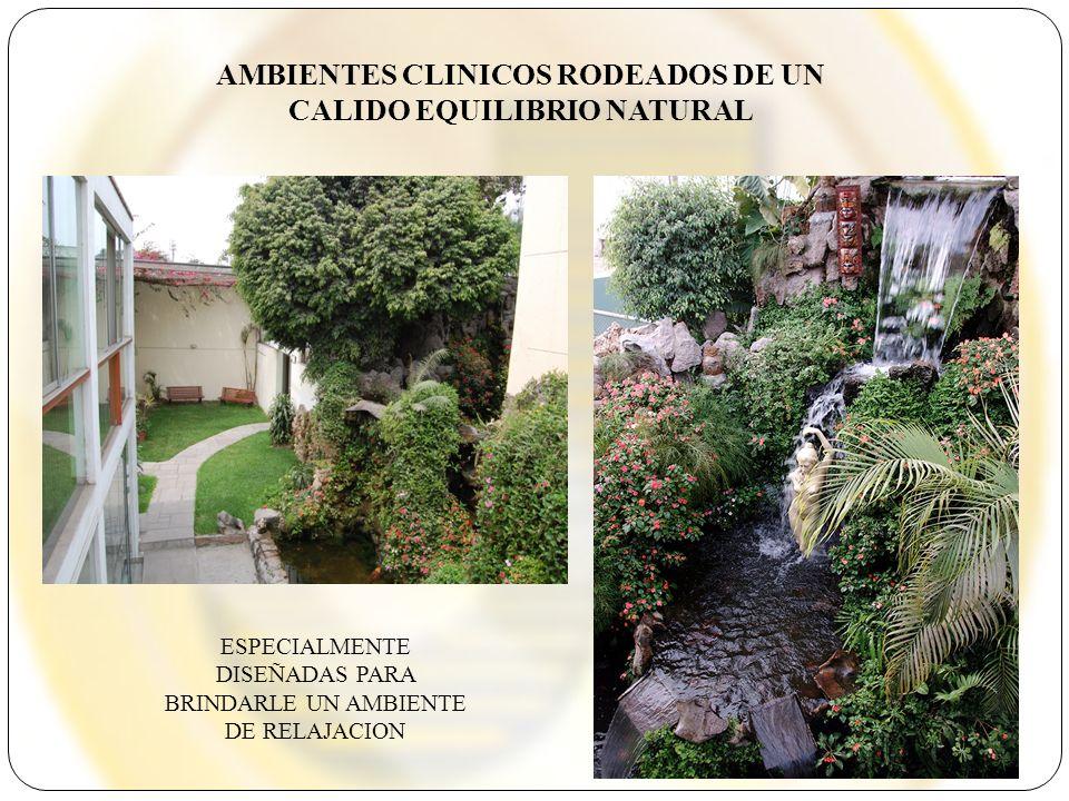 AMBIENTES CLINICOS RODEADOS DE UN CALIDO EQUILIBRIO NATURAL
