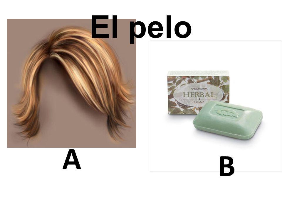 El pelo A B 26