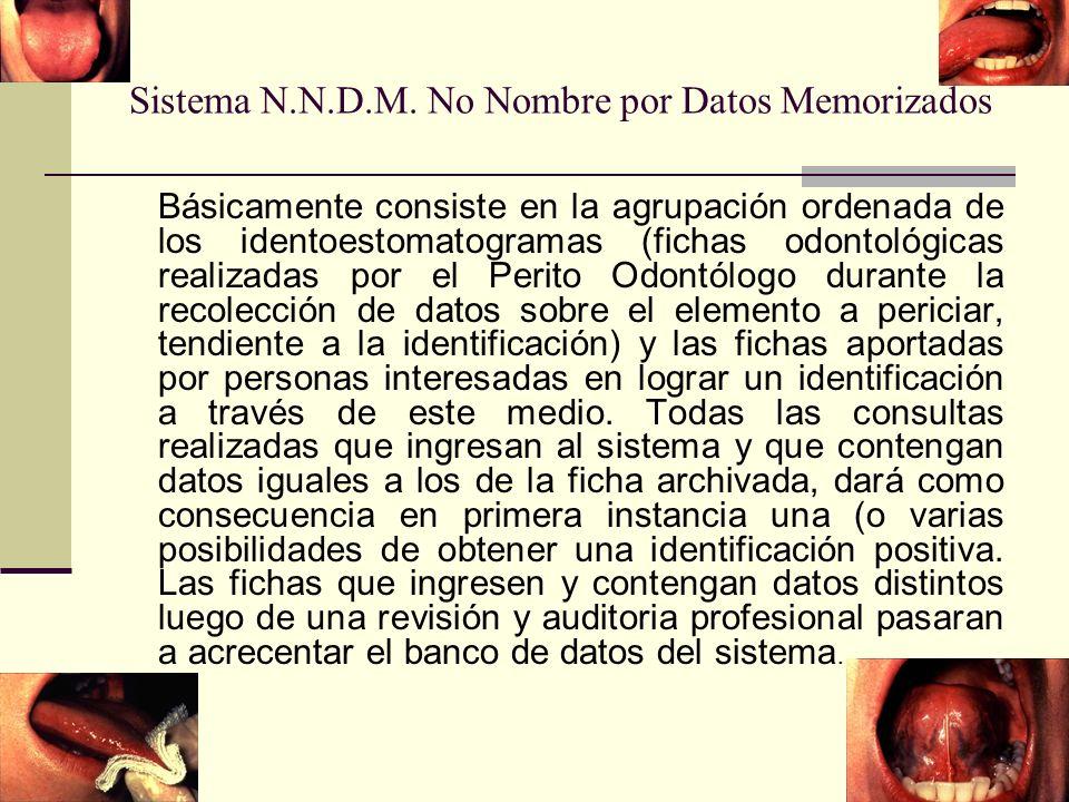 Sistema N.N.D.M. No Nombre por Datos Memorizados
