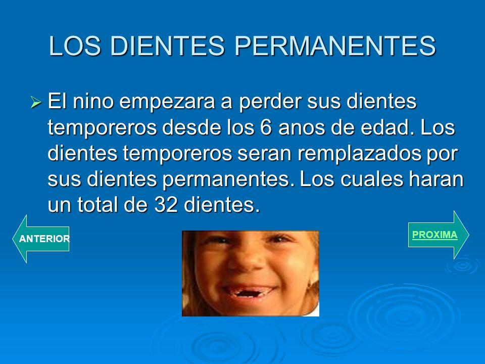 LOS DIENTES PERMANENTES