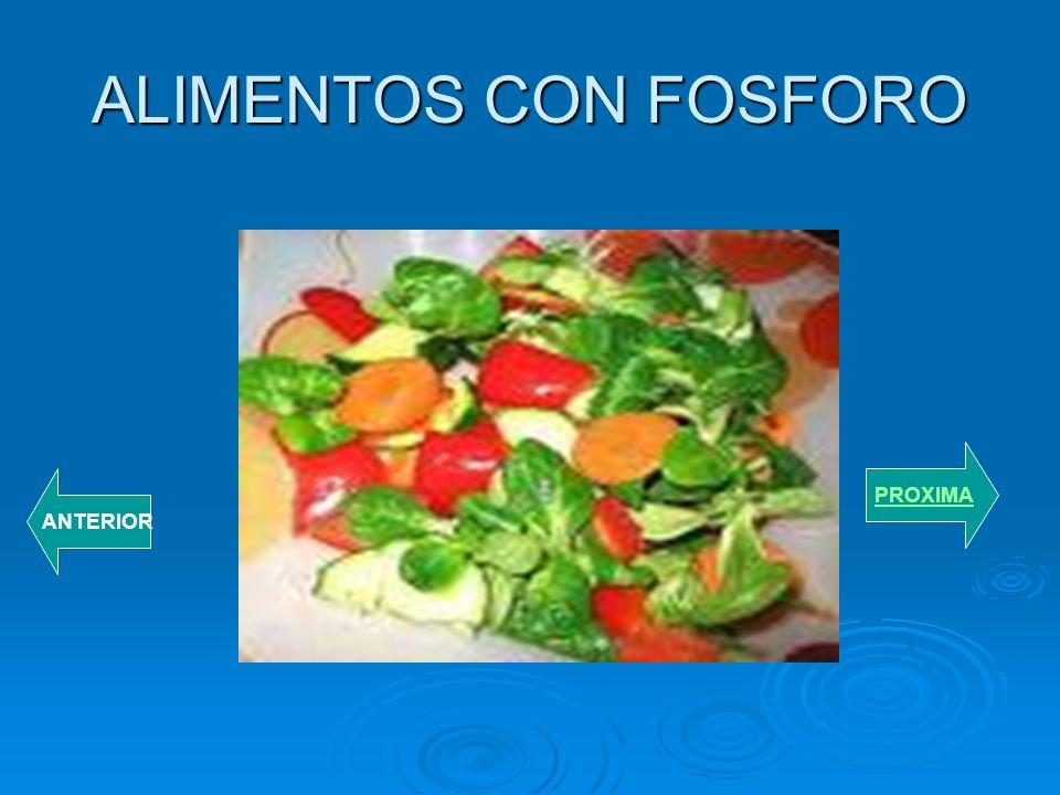 ALIMENTOS CON FOSFORO PROXIMA ANTERIOR