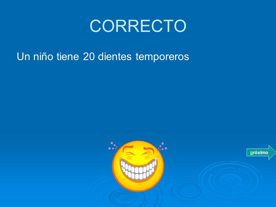 CORRECTO Un niño tiene 20 dientes temporeros próximo