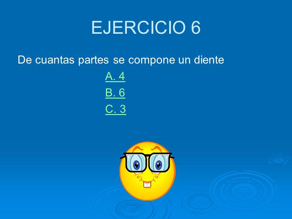 EJERCICIO 6 De cuantas partes se compone un diente A. 4 B. 6 C. 3