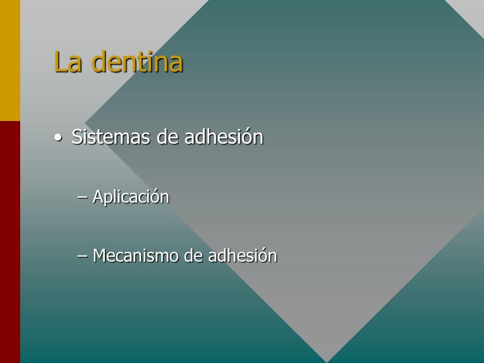 La dentina Sistemas de adhesión Aplicación Mecanismo de adhesión