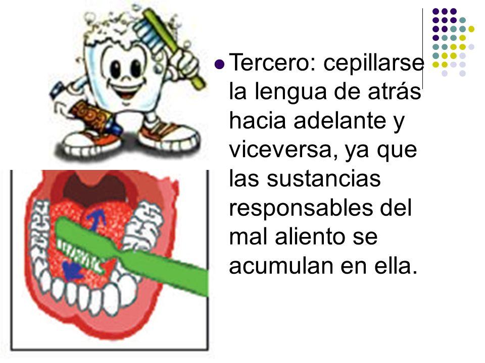Tercero: cepillarse la lengua de atrás hacia adelante y viceversa, ya que las sustancias responsables del mal aliento se acumulan en ella.