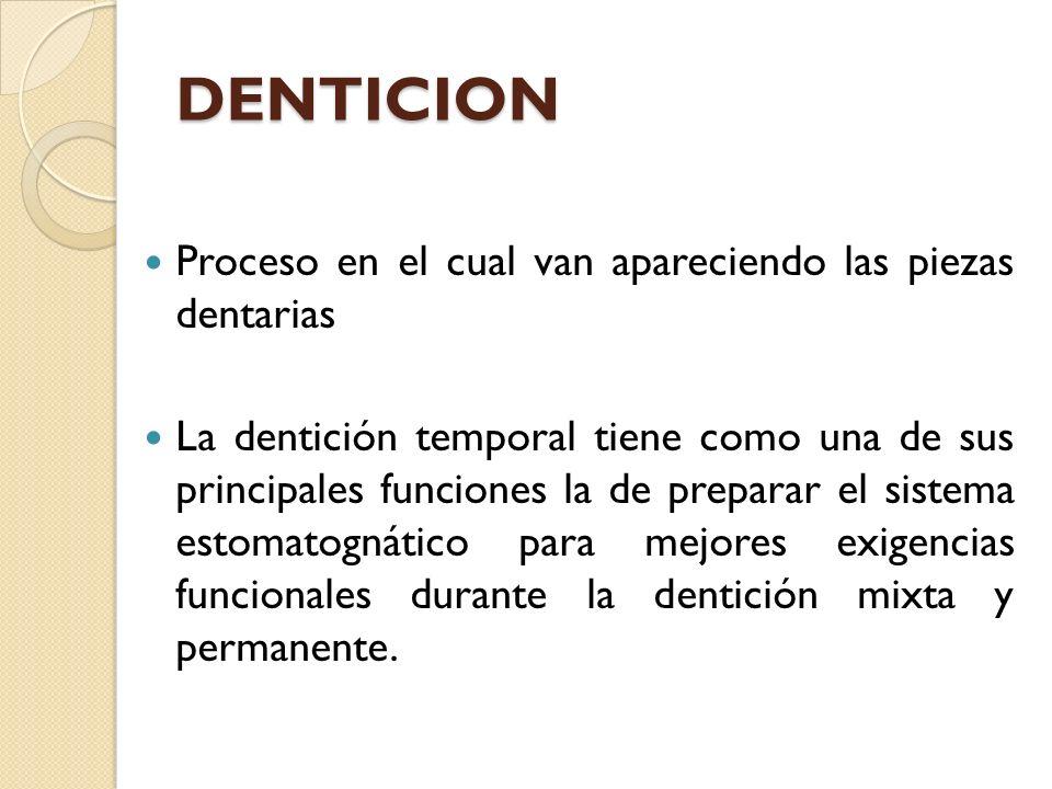 DENTICION Proceso en el cual van apareciendo las piezas dentarias
