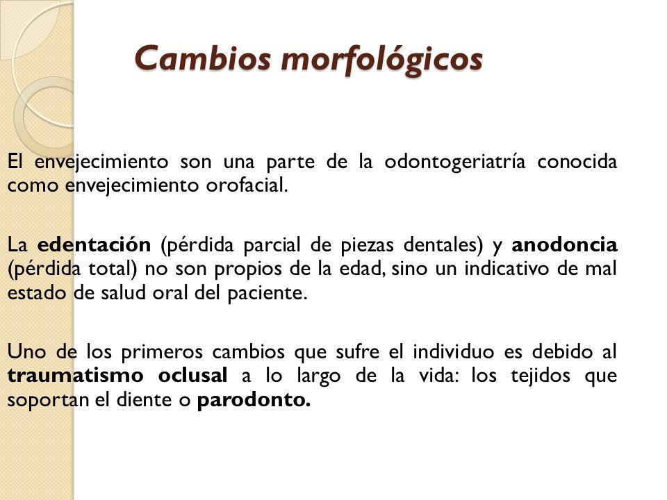 Cambios morfológicos El envejecimiento son una parte de la odontogeriatría conocida como envejecimiento orofacial.