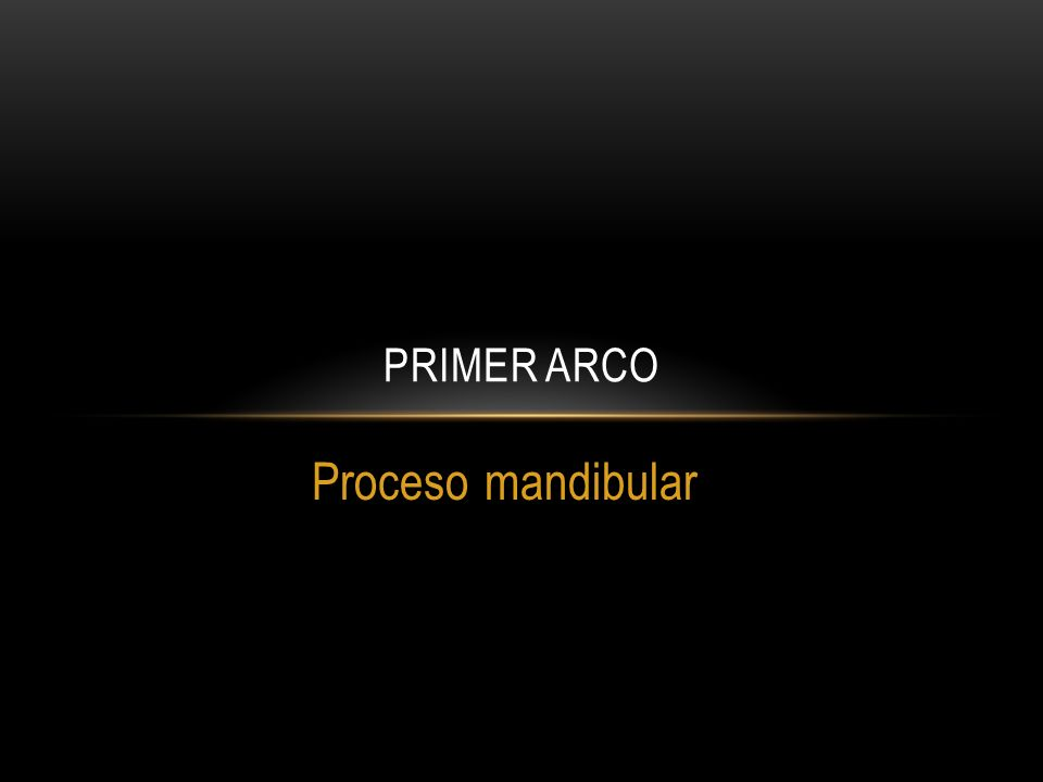 Primer arco Proceso mandibular