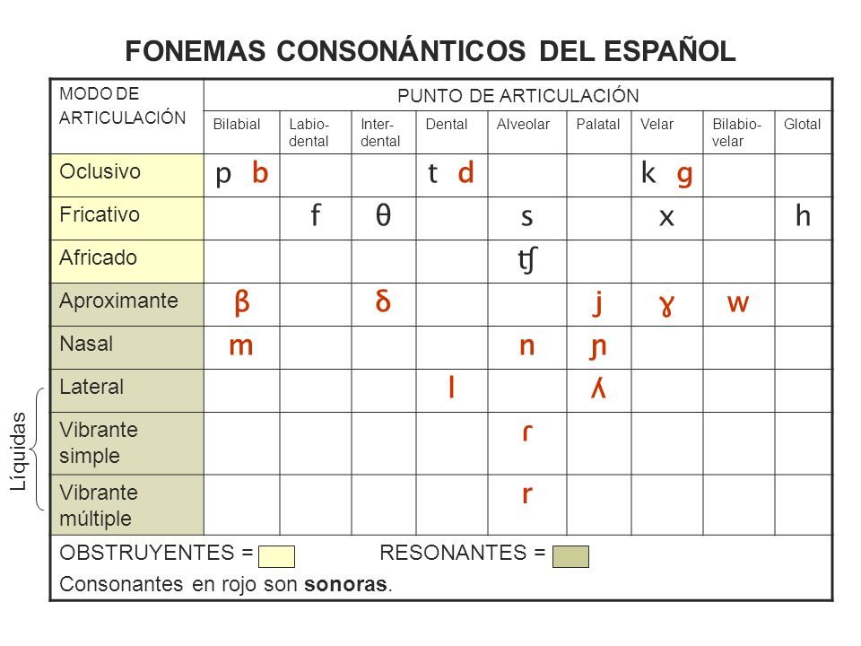 FONEMAS CONSONÁNTICOS DEL ESPAÑOL