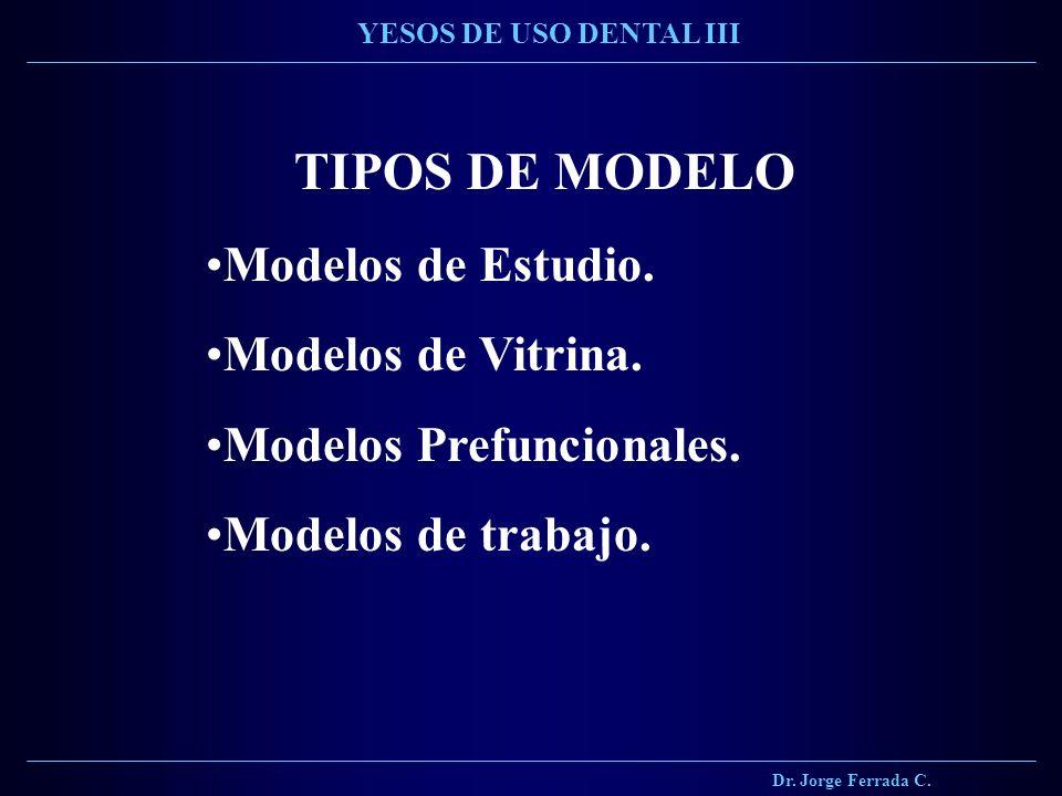 TIPOS DE MODELO Modelos de Estudio. Modelos de Vitrina.