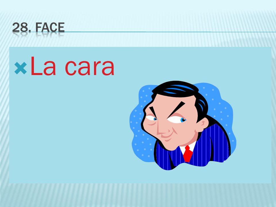 28. FACE La cara