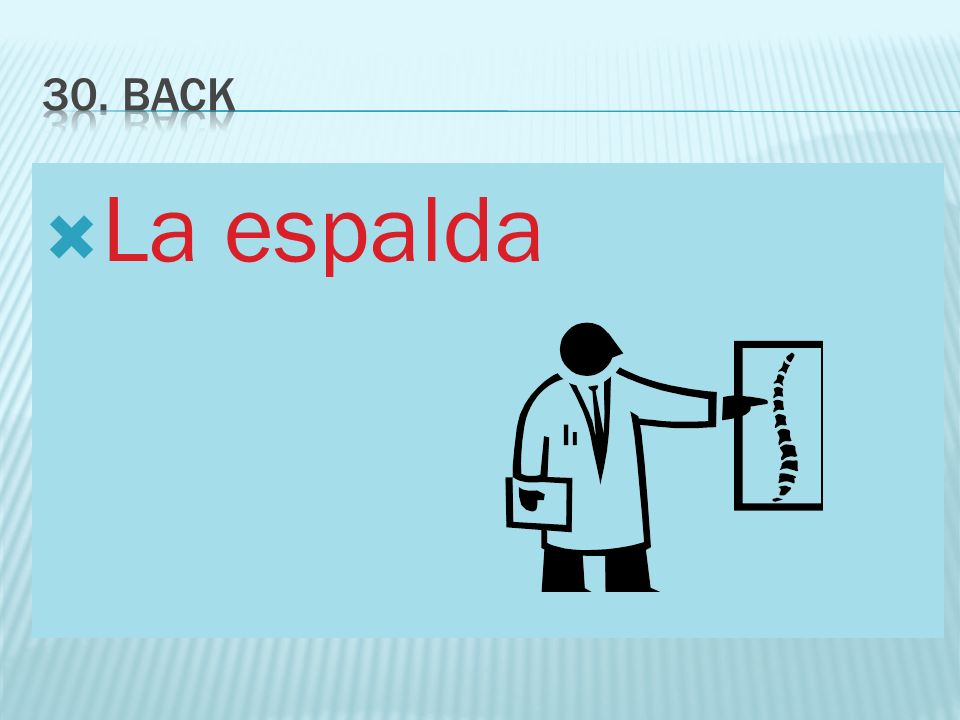 30. Back La espalda