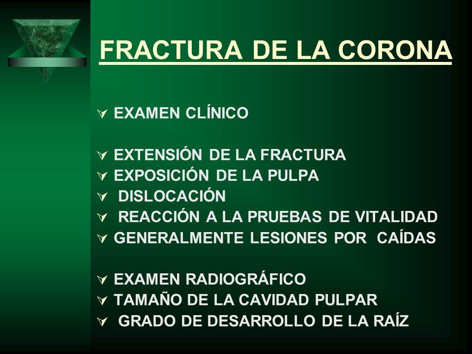 FRACTURA DE LA CORONA EXAMEN CLÍNICO EXTENSIÓN DE LA FRACTURA