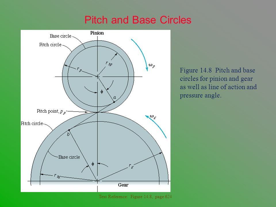 Pitch and Base Circles Figure 14.8 Pitch and base circles for pinion and gear as well as line of action and pressure angle.