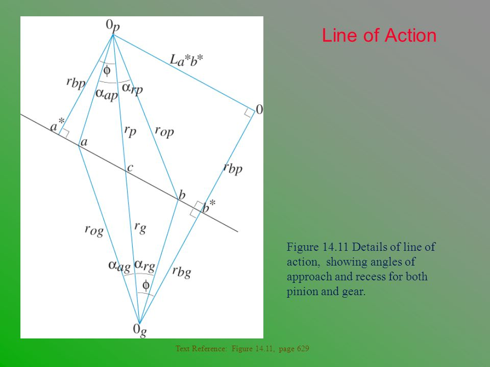 Line of Action Figure 14.11 Details of line of action, showing angles of approach and recess for both pinion and gear.