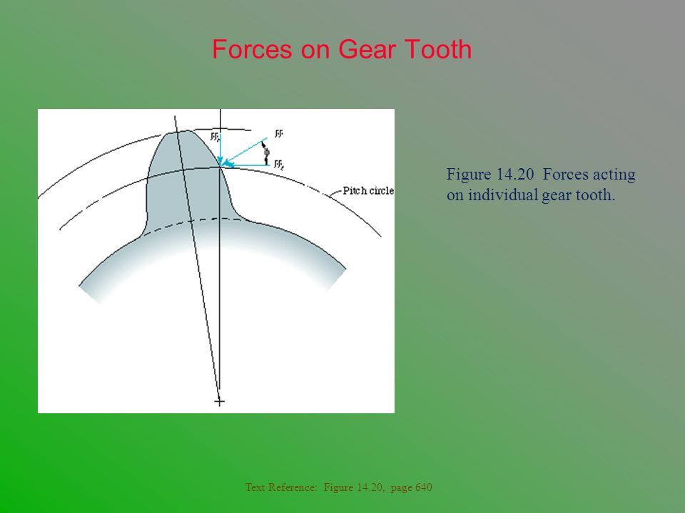 Forces on Gear Tooth Figure 14.20 Forces acting on individual gear tooth.