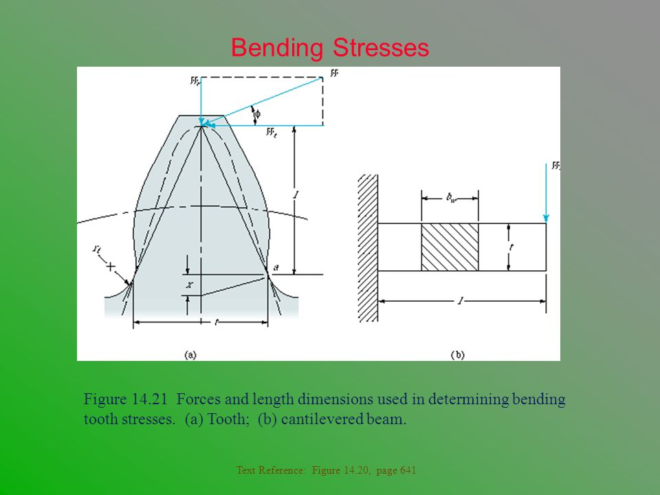Bending Stresses Figure 14.21 Forces and length dimensions used in determining bending tooth stresses. (a) Tooth; (b) cantilevered beam.