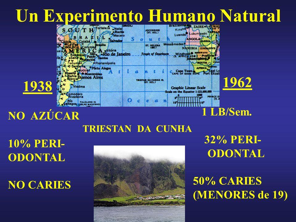 Un Experimento Humano Natural