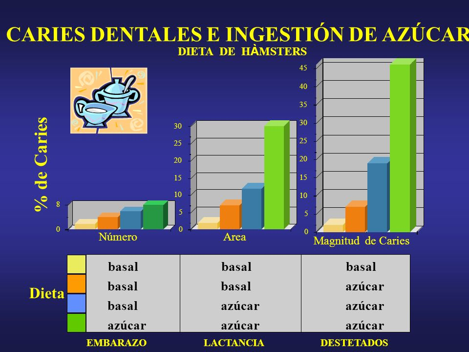 CARIES DENTALES E INGESTIÓN DE AZÚCAR