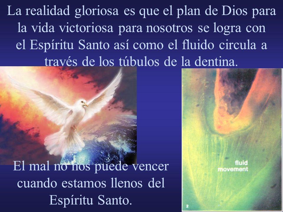 La realidad gloriosa es que el plan de Dios para