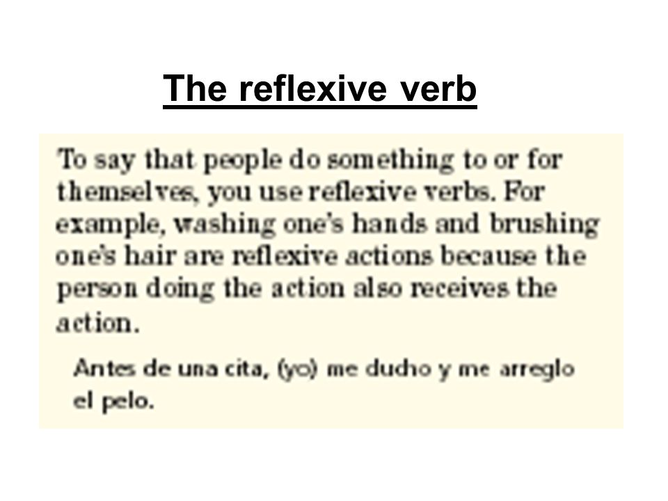 The reflexive verb