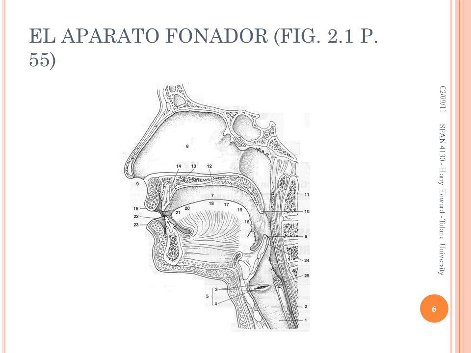 EL APARATO FONADOR (FIG. 2.1 P. 55)