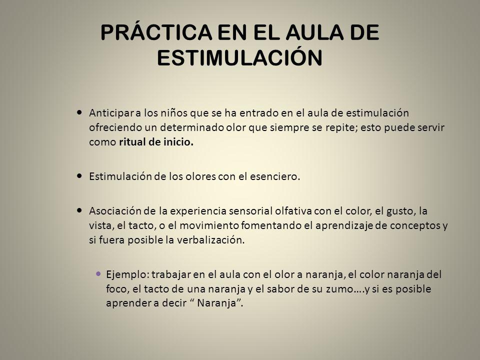 PRÁCTICA EN EL AULA DE ESTIMULACIÓN