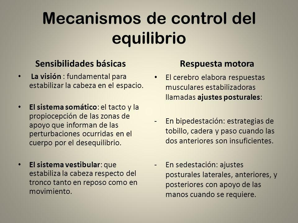 Mecanismos de control del equilibrio