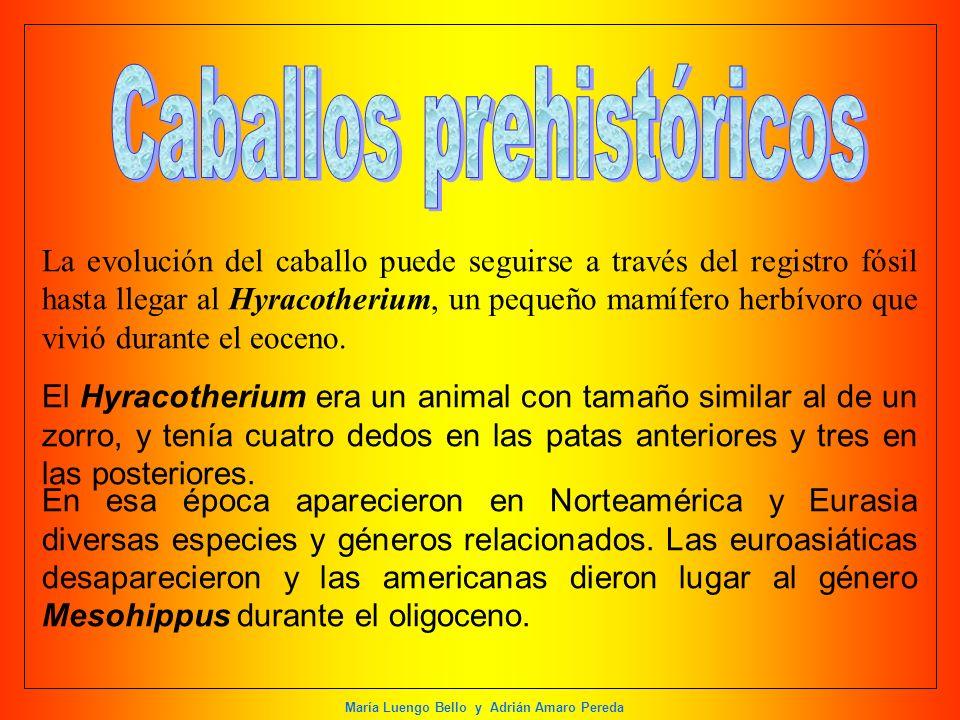 Caballos prehistóricos