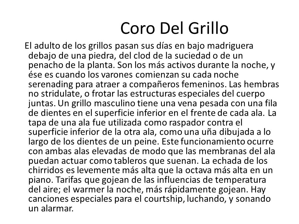 Coro Del Grillo