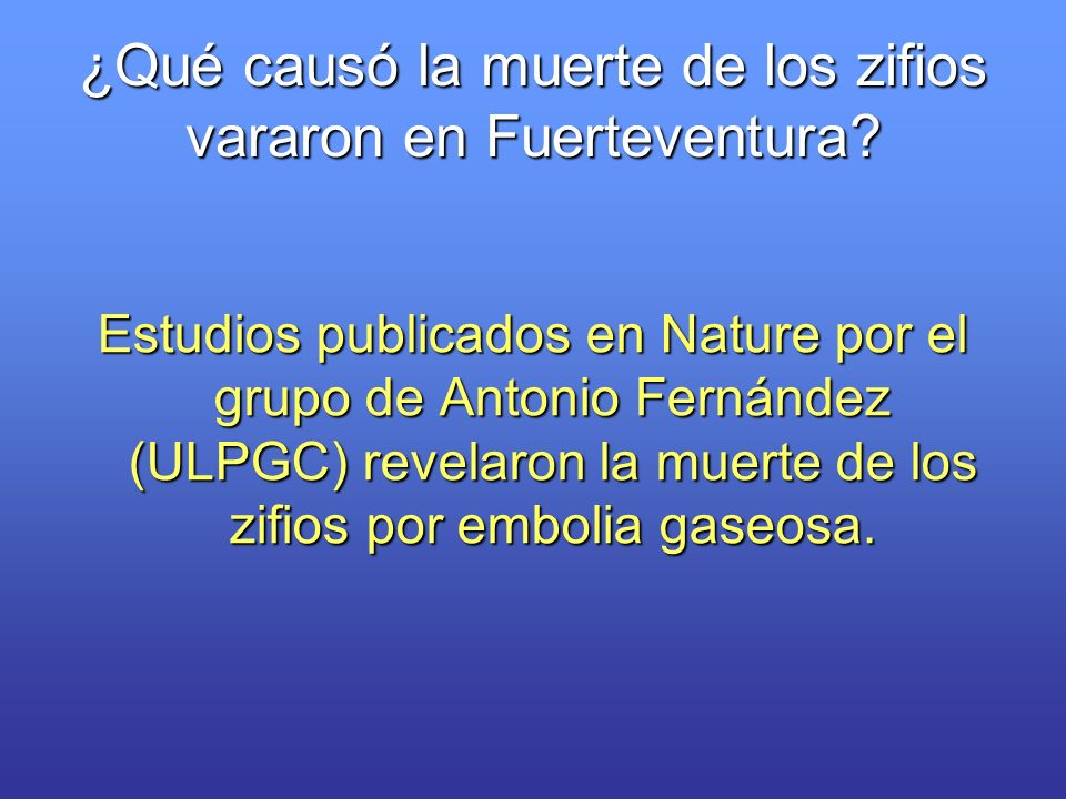 ¿Qué causó la muerte de los zifios vararon en Fuerteventura