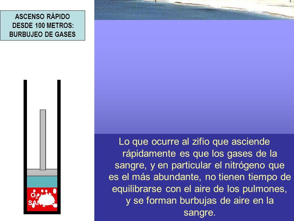 ASCENSO RÁPIDO DESDE 100 METROS: BURBUJEO DE GASES.