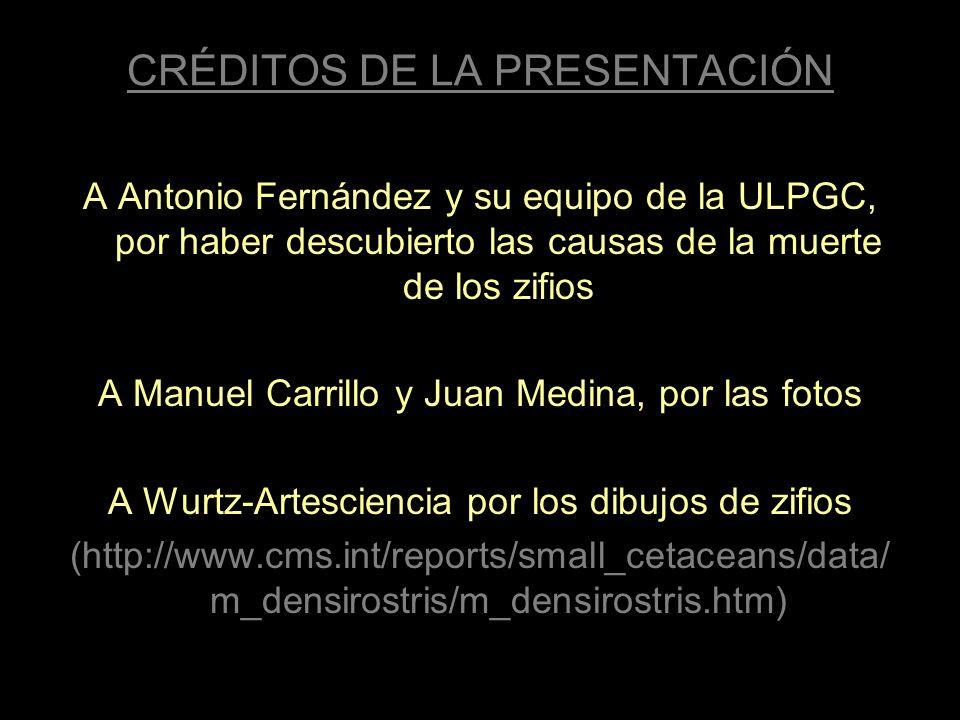 CRÉDITOS DE LA PRESENTACIÓN