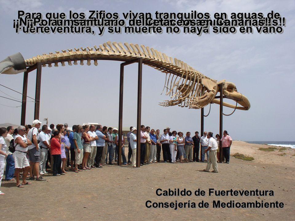 Cabildo de Fuerteventura Consejería de Medioambiente