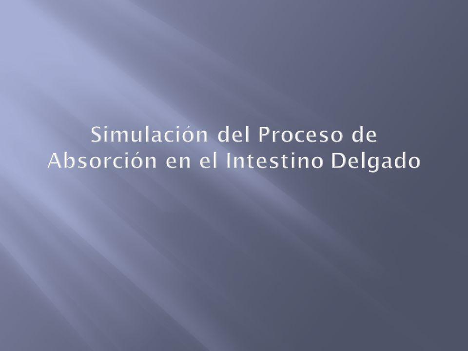 Simulación del Proceso de Absorción en el Intestino Delgado