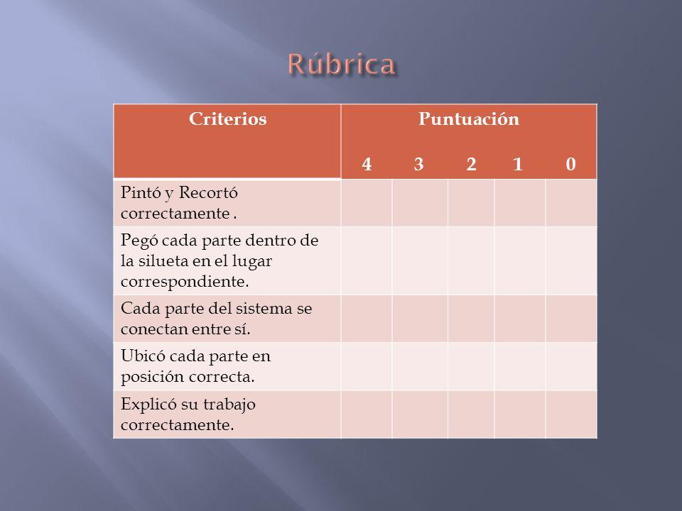 Rúbrica Criterios Puntuación 4 3 2 1 0 Pintó y Recortó correctamente .