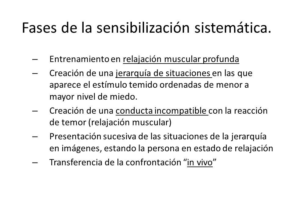 Fases de la sensibilización sistemática.